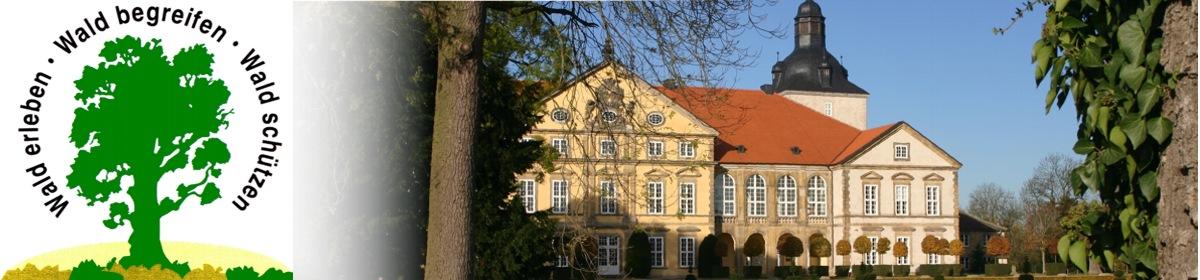 Förderverein Haus des Waldes e.V.
